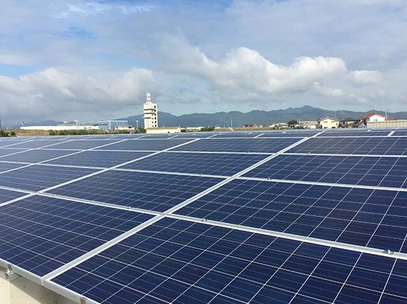 雨による自浄効果により発電効率向上も期待